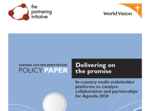 Delivering on the Promise: How to accelerate progress and contribution for Agenda 2030
