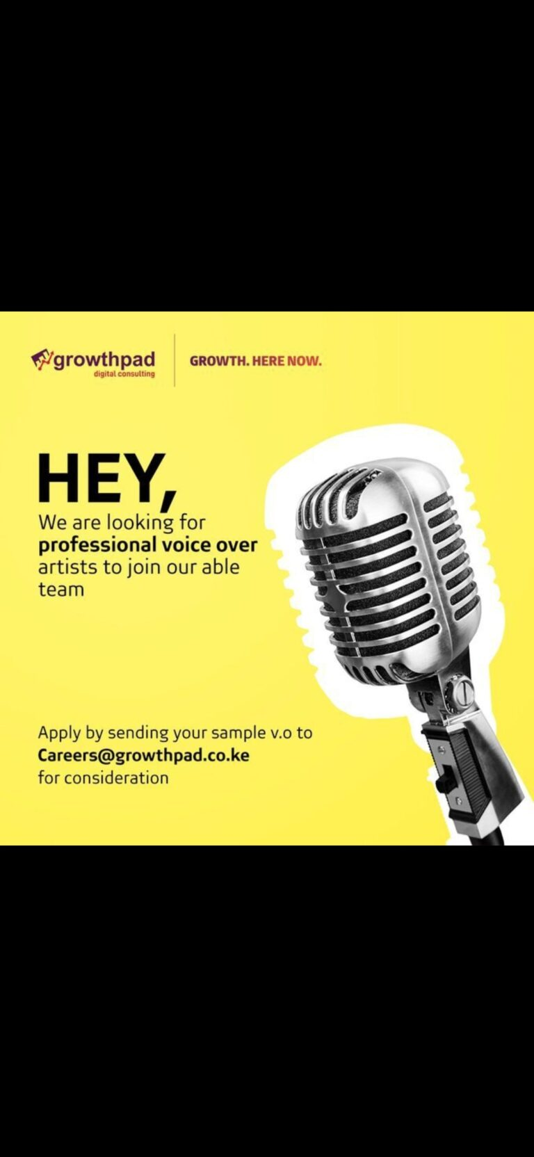 PROFESSIONAL VOICE OVER ARTISTS